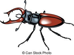 Stag Beetle clipart #20, Download drawings