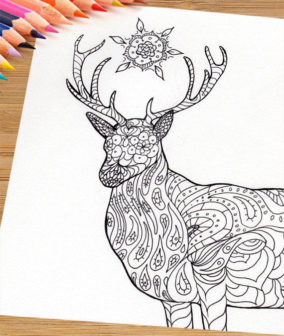 Stag Coloring Download Stag Coloring