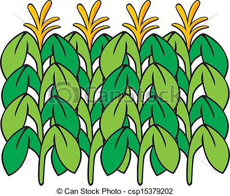 Cornfield clipart #19, Download drawings