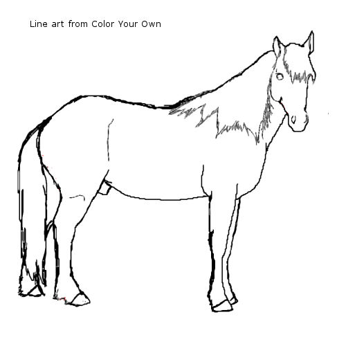 Stallion coloring #13, Download drawings