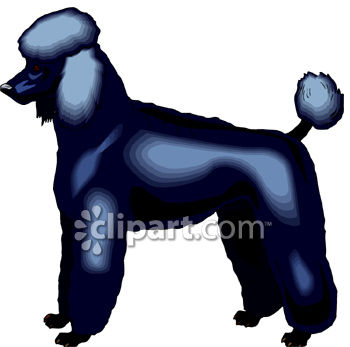 Standard Poodle clipart #6, Download drawings