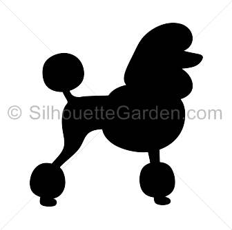 Standard Poodle clipart #17, Download drawings