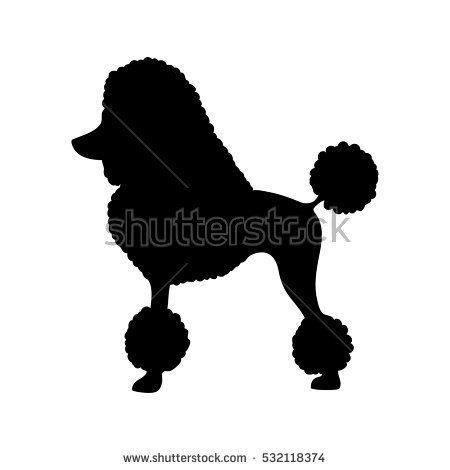 Standard Poodle clipart #16, Download drawings