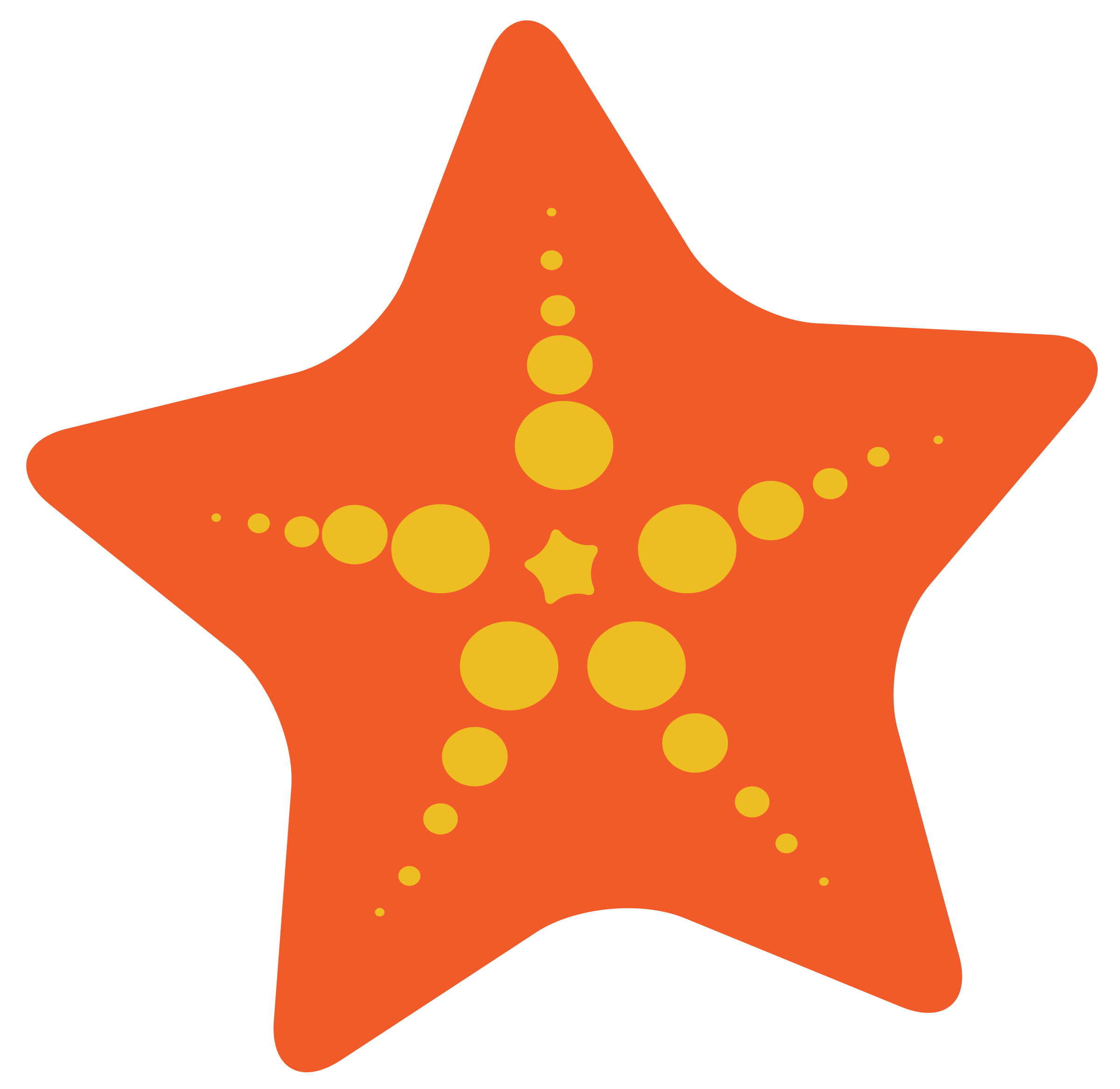 Starfish clipart #7, Download drawings
