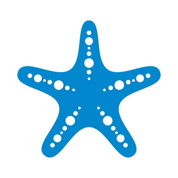 Starfish svg #716, Download drawings