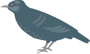 Starling clipart #19, Download drawings