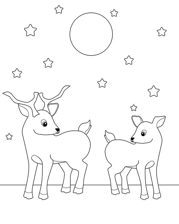 how to draw starry sky