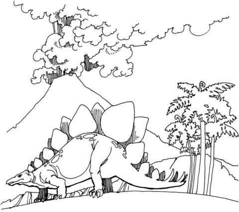 Stegosaurus coloring #14, Download drawings
