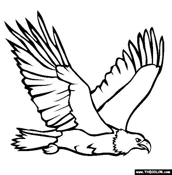 Steller's Sea Eagle coloring #18, Download drawings