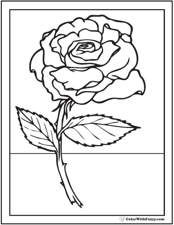 stem coloring download stem coloring