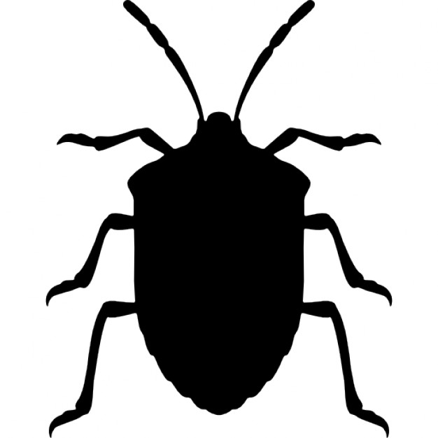 Stink Bug clipart #5, Download drawings