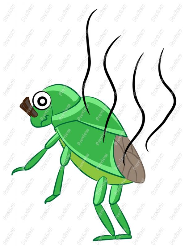 Stink Bug clipart #20, Download drawings