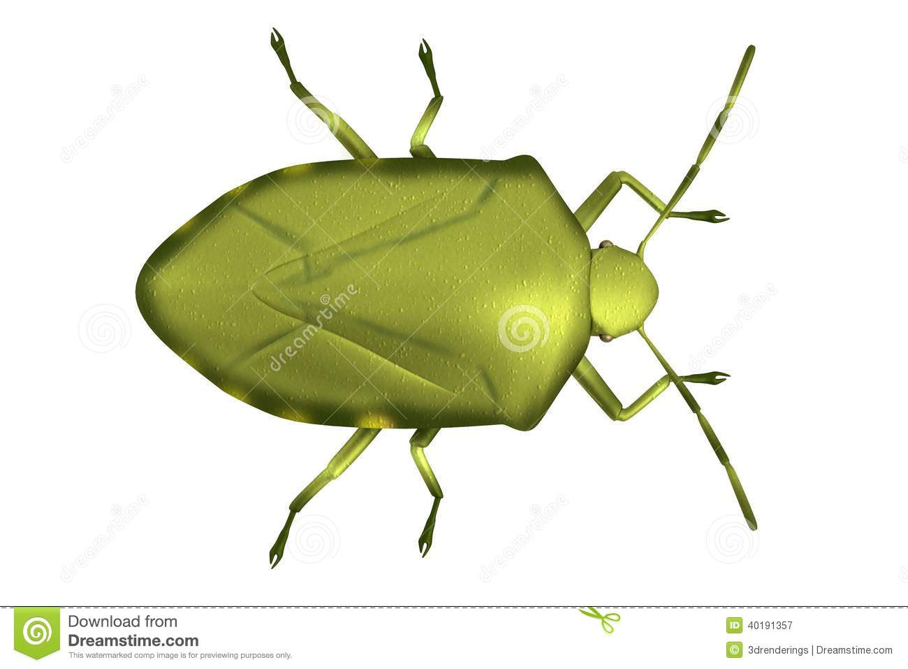Stink Bug clipart #17, Download drawings