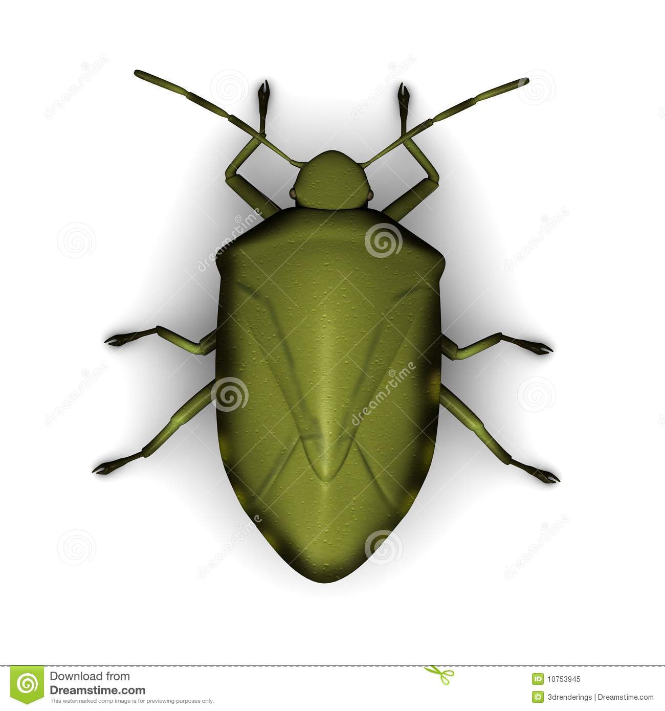 Stink Bug clipart #16, Download drawings