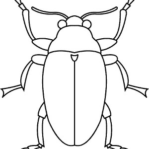Stink Bug coloring #5, Download drawings