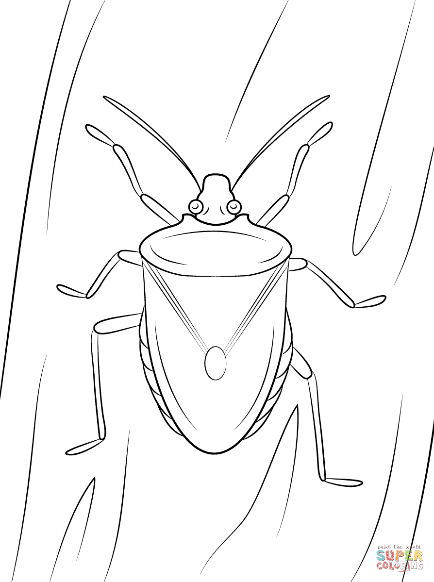 Stink Bug coloring #7, Download drawings