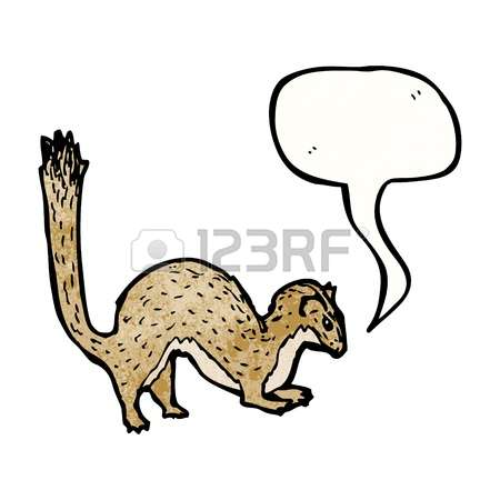 Stoat clipart #7, Download drawings