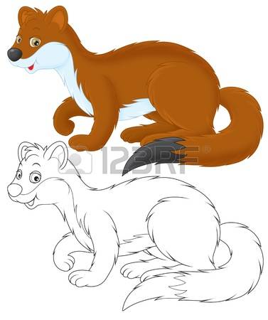 The Stoat clipart #13, Download drawings