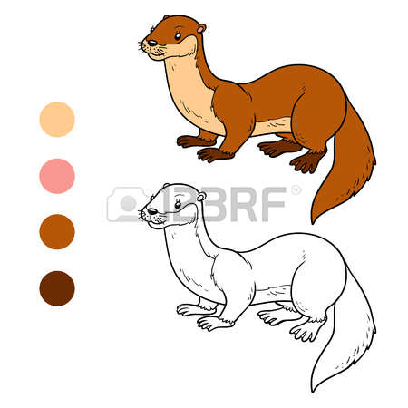 Stoat coloring #19, Download drawings