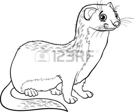 Stoat coloring #8, Download drawings