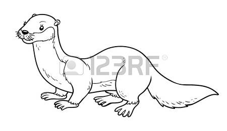 Stoat coloring #20, Download drawings