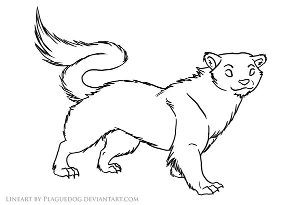 Stoat coloring #3, Download drawings