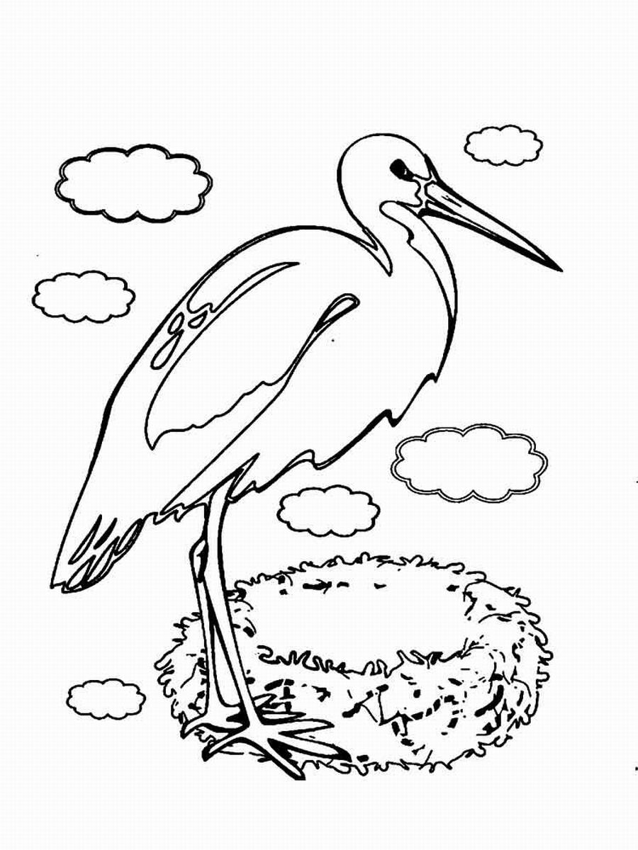 Stork coloring #13, Download drawings