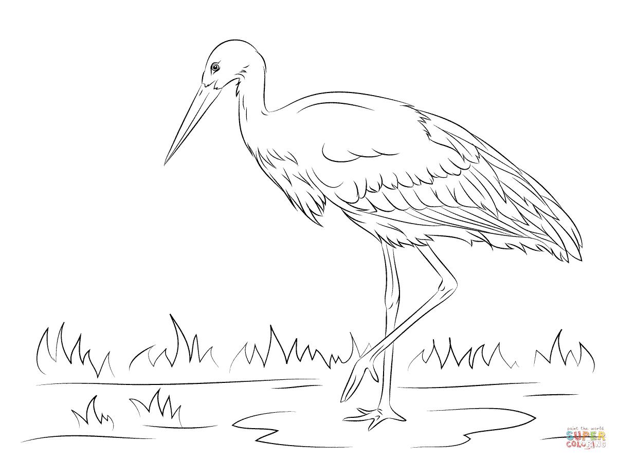 Stork coloring #18, Download drawings