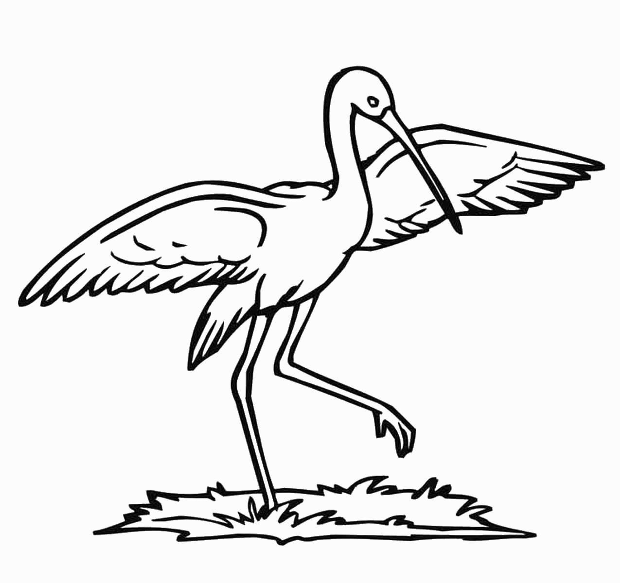 Stork coloring #17, Download drawings