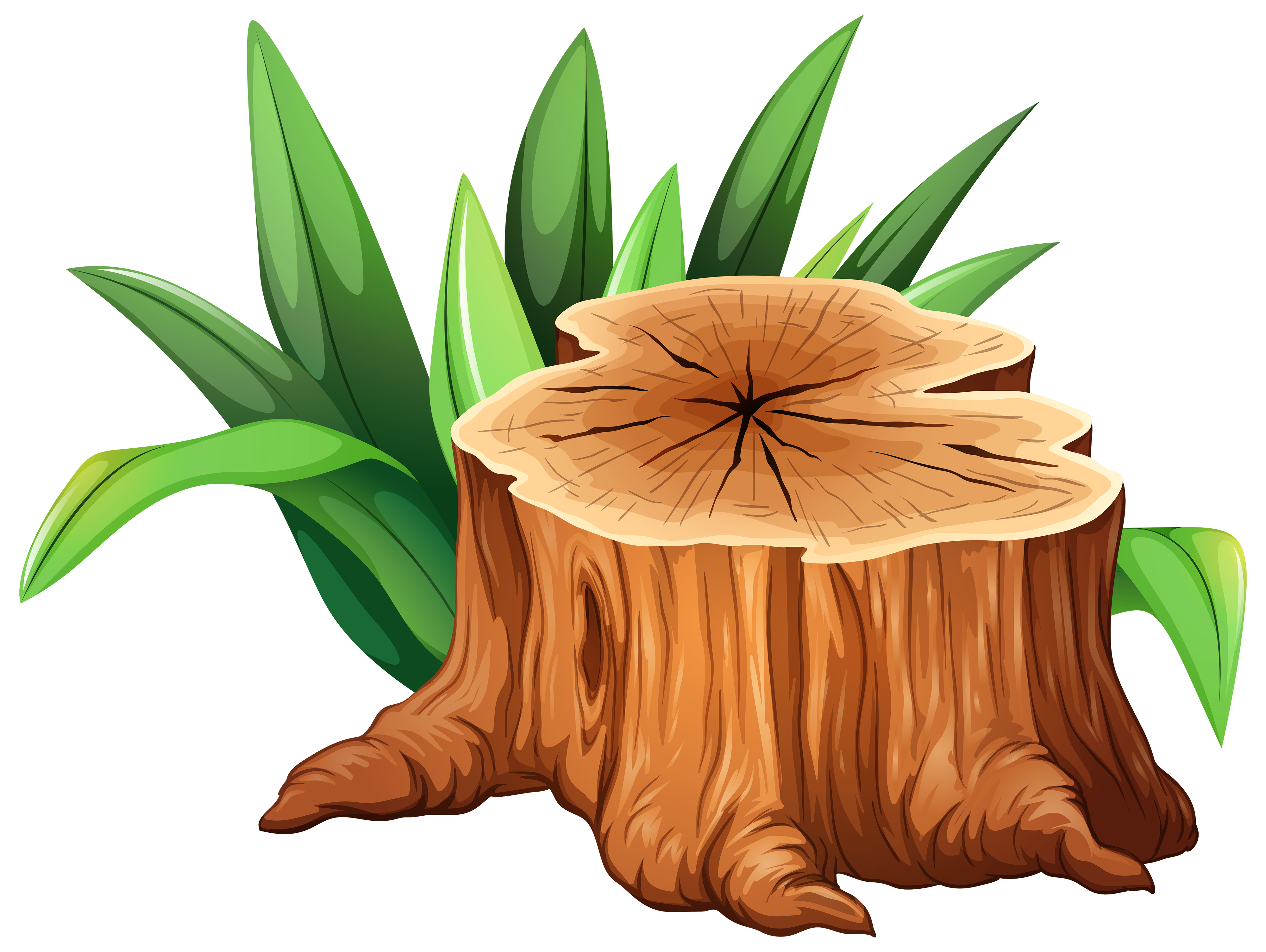 Stump clipart #3, Download drawings