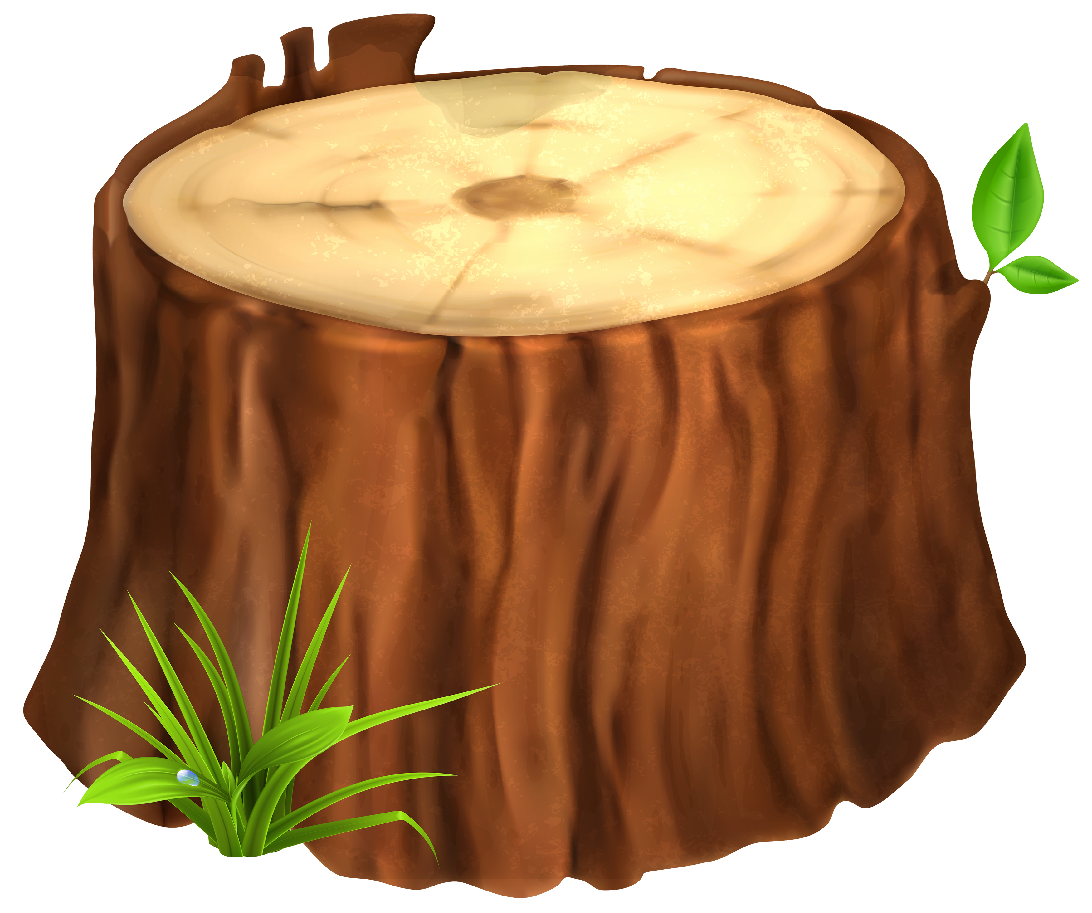 Stump clipart #4, Download drawings