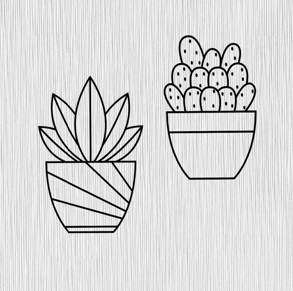 succulent svg #239, Download drawings
