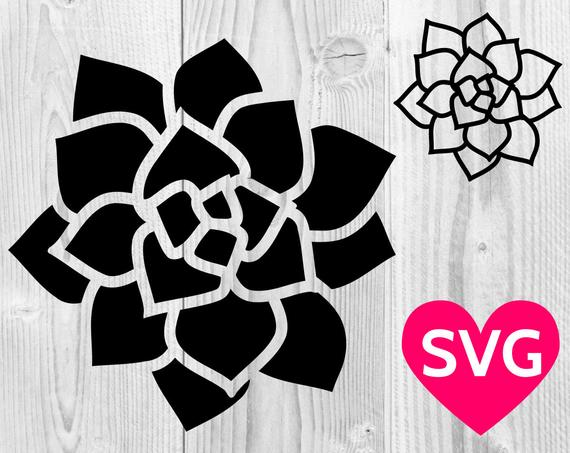 succulent svg #237, Download drawings