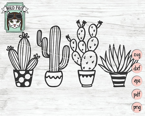 succulent svg #236, Download drawings