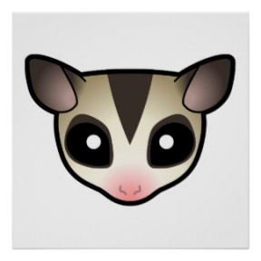 Sugar Glider clipart #9, Download drawings