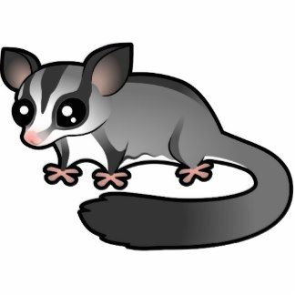 Sugar Glider clipart #16, Download drawings