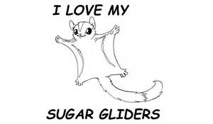 Sugar Glider coloring #16, Download drawings