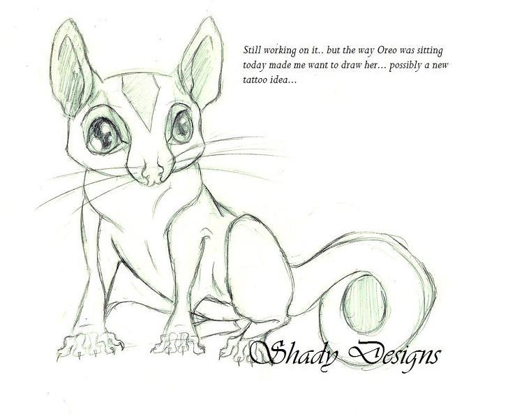 Sugar Glider coloring #6, Download drawings