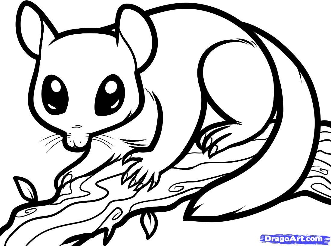 Sugar Glider coloring #18, Download drawings