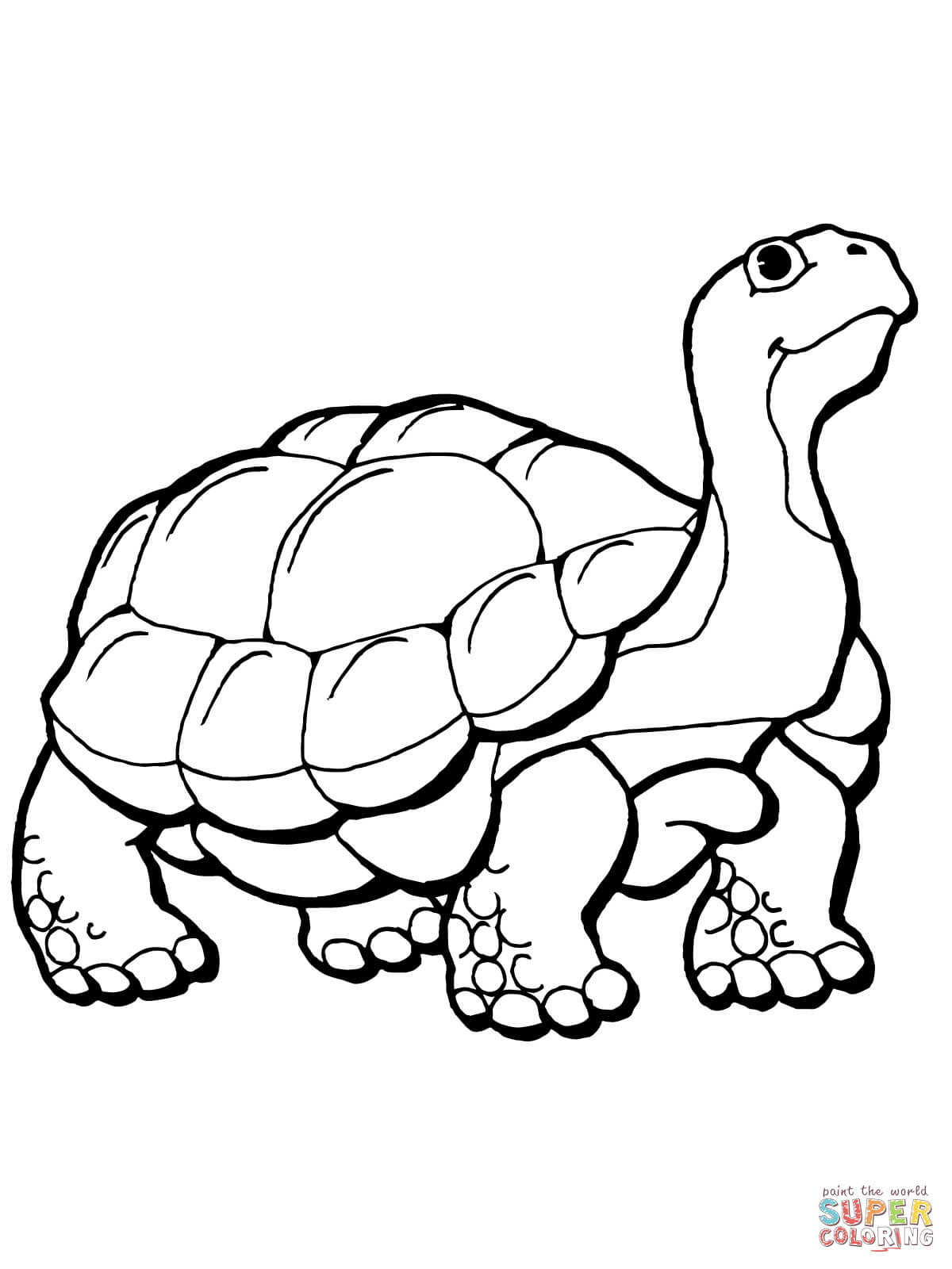 Sulcata Tortoise coloring #8, Download drawings