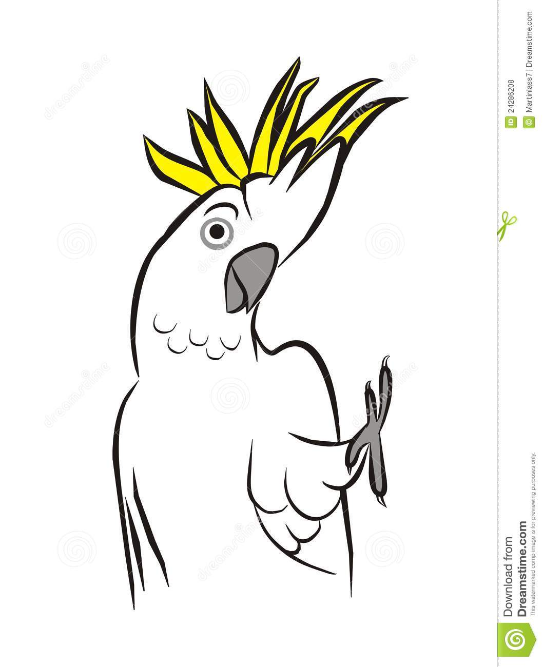Sulphur-crested Cockatoo clipart #2, Download drawings