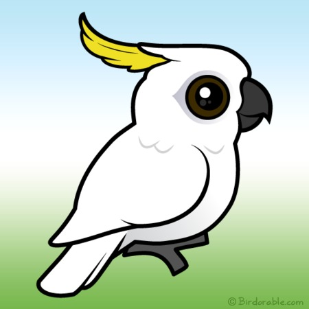 Sulphur-crested Cockatoo clipart #1, Download drawings