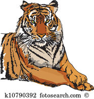 Sumatran Tiger clipart #12, Download drawings