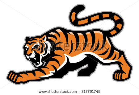 Sumatran Tiger clipart #8, Download drawings
