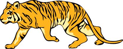 Sumatran Tiger clipart #2, Download drawings