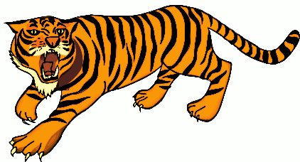 Sumatran Tiger clipart #4, Download drawings