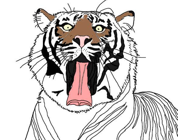 Sumatran Tiger coloring #14, Download drawings