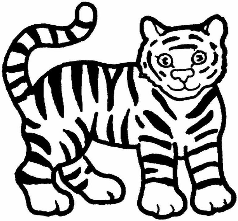 Sumatran Tiger coloring #10, Download drawings