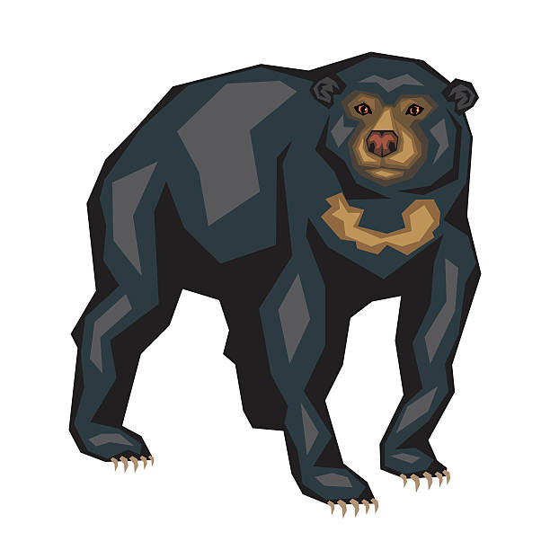 Sun Bear clipart #18, Download drawings