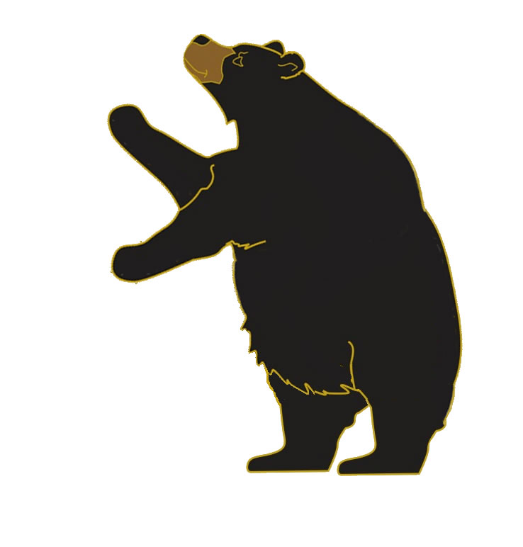 Sun Bear clipart #19, Download drawings
